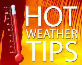 Hot Weather Tips image