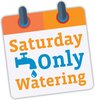 Saturday Watering Only