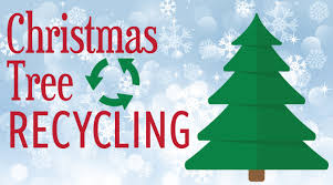 Christmas Tree Disposal.Make Christmas Tree Recycling A Holiday Tradition Office
