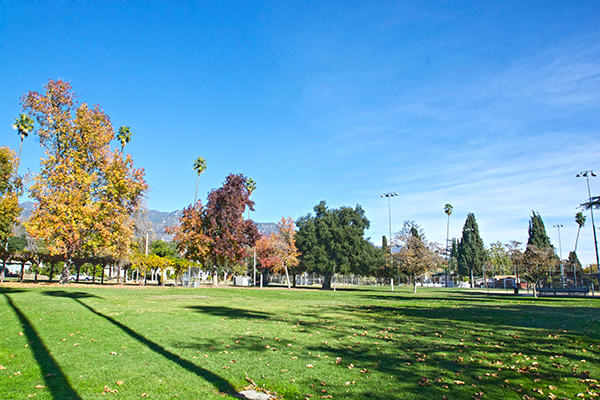 Image of grass area at Jefferson Park
