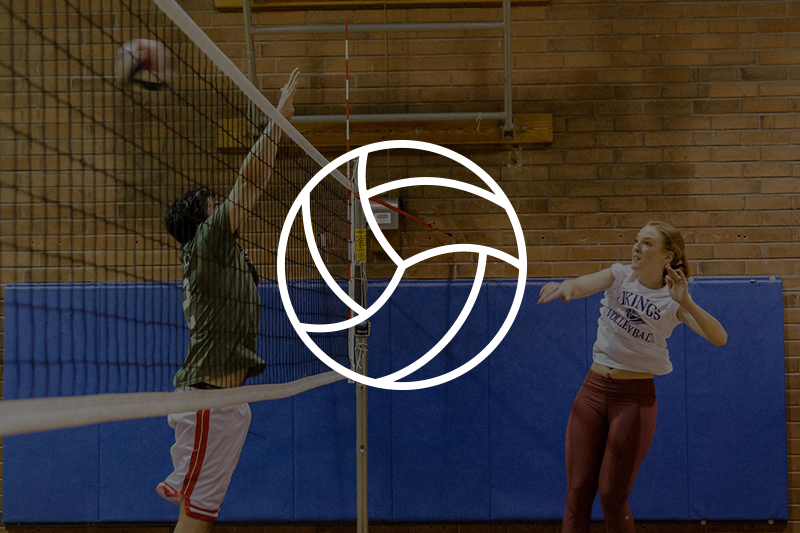 Image of adults playing volleyball