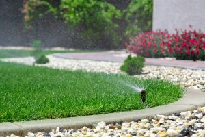 Automatic sprinklers watering grass. pebbles surrounding patch of grass